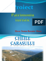 patrimoniu turistic