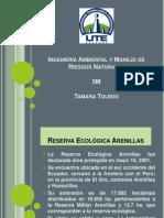 presentacion Arenillas