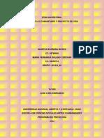 DESARROLLO COMUNITARIO Y PROYECTO DE VIDA