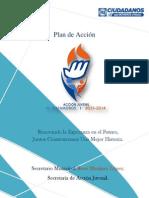 Plan de Acción Acción Juvenil Matamoros 2013-2014