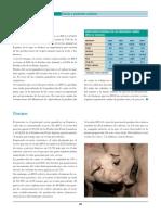 Pag 194-225 Carnes y Productos Carnicos