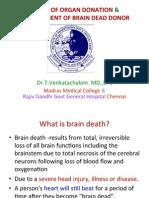 75961250 Basics of Organ Donation Management of Brain Dead Donor