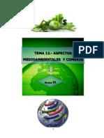 Comercio Internacional y Medioambiente UB2