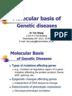 Wang - Molecular Basis of Genetic Diseases