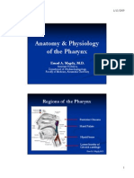 Anatomy & Physiology of the Pharynx
