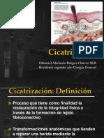 Expo Cicatrizacion