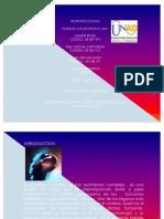 39866476-TRABAJO-COLABORATIVNEUROPSICOLOGIA.pdf