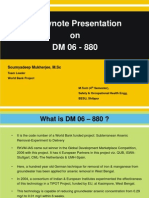 Presentation on project DM 06-880