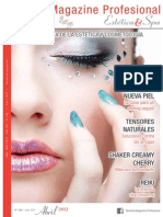 Magazine Profesional