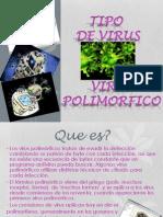 Virus Polimorfico