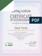 Certificado ProConcrete