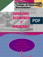 Derecho Economia y Sociedad(1)
