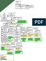 Patofiss, Komplikasi, Dx, Penatalaksanaan (1)