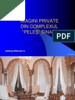 Pelesul_ascuns.pps