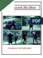 6680676 Backyard Jiu Jitsu