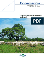 Diagnóstico das Pastagens no Brasil