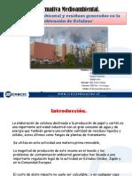 Presentación Normativa Medioambiental; Celulosa.pptx