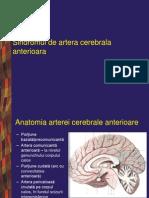 17345658 Boli Vasculare Cerebrale p1