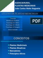Plantas Medicinais - Palestra Completa