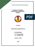 Placenta Efrain Condori Mestas