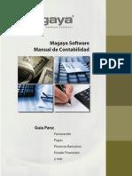 Accounting Manual Es(6)