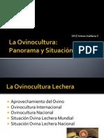Situación Ovinocultura AAZ