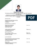 CV Diego Luyo Enciso