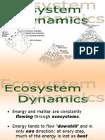 Ecosystem Dynamics.ppt