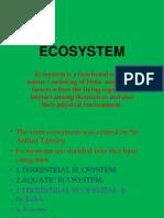 Ecosystem -