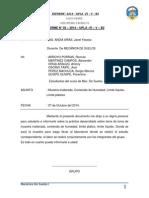 Informe de Muetra Inalterada..