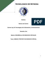 Desarrollo de Negocios Virtuales(Unidad 4)