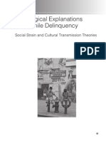 Sociological Explanations for Juvenile Delinquency