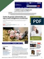Cerdos de Granjas Alimentados Con Soja y Maíz Transgénicos Se Enferman _ Lagranepoca