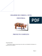 Cria de Cerdos a Nivel Industrial