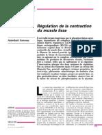 Régulation du muscle lisse