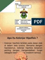 Andi Nuril Fahmi Rustam (N111 12 113) (Gangguan Kelenjar Hipofisis).pptx