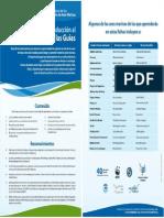PDF Guia Avfhmes