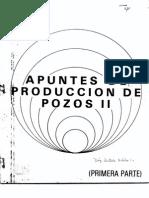Apuntes de Produccion de Pozos II