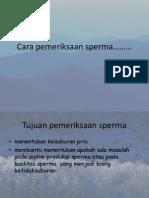 Cara Pemeriksaan Sperma 2