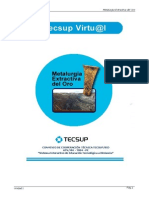 Metalurgia Extractiva del Oro