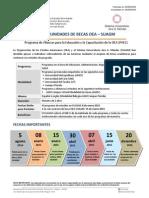 Convocatoria OEA-SUAGM 04ago14