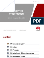IBS Service Presentation