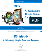 IQ Matrix Guide for Beginners v.2
