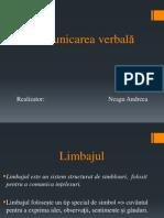 Proiect ICI