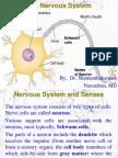 02 Central Nervous Systemppt6924 120704044752 Phpapp01