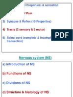 1.cns.1.Receptor.1.1..ppt