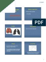 Aula 1 2011 Anatomia-fisiologia Respiratória2