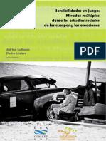 TX SCRIBANO EstudiosSocialesCuerposEmociones