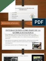 EXPOSICION ECOLOGIA.pptx