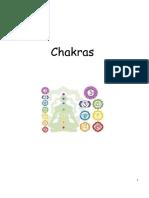 APUNTES CHACRAS